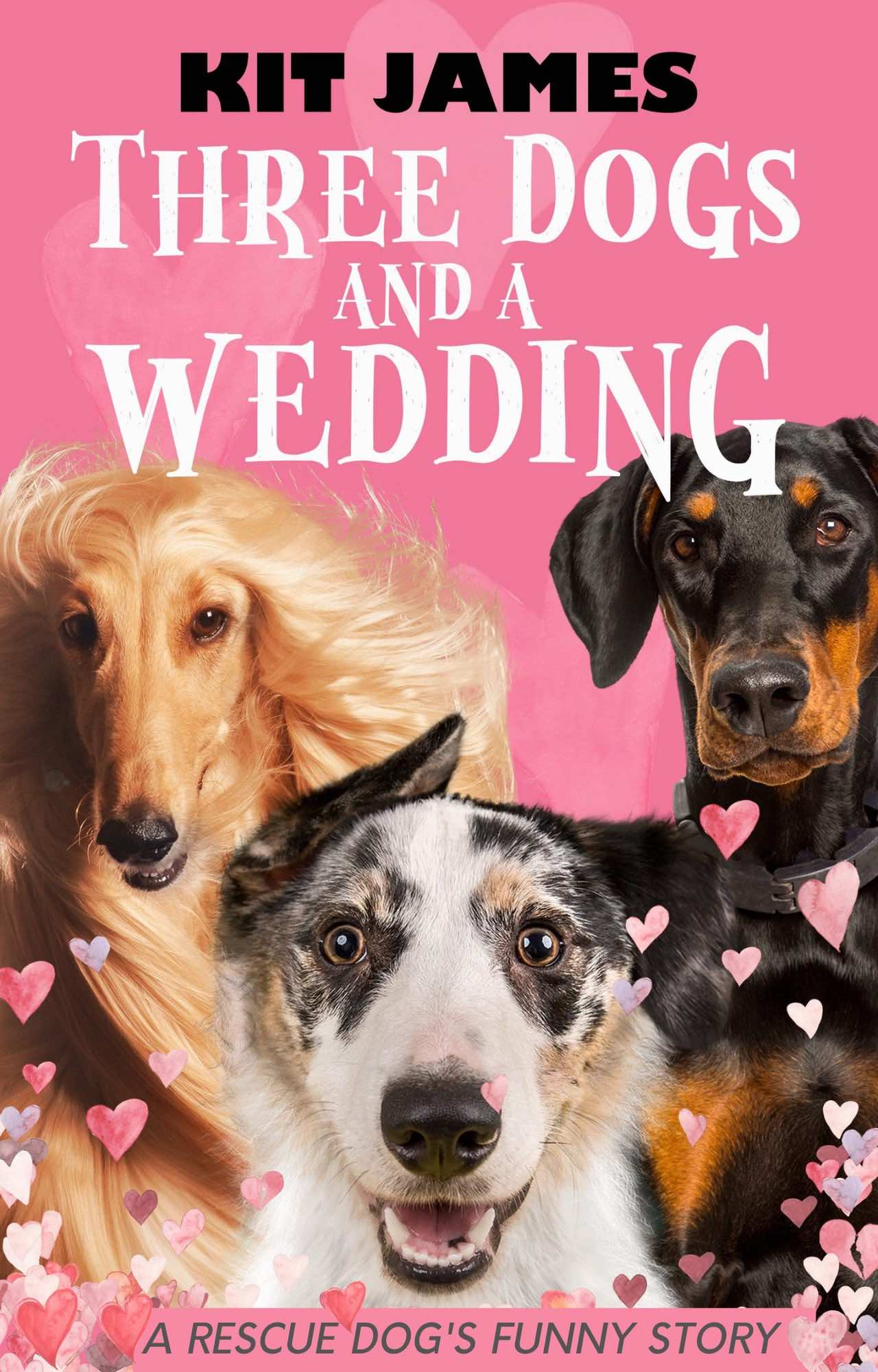 Three Dogs And A Wedding