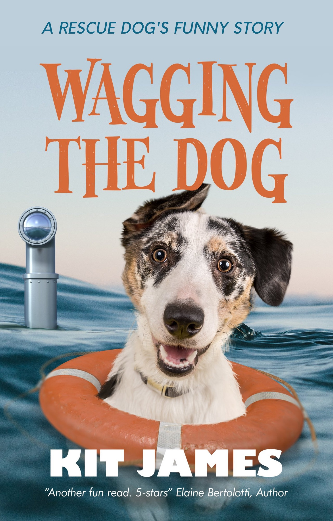 Wagging The Dog